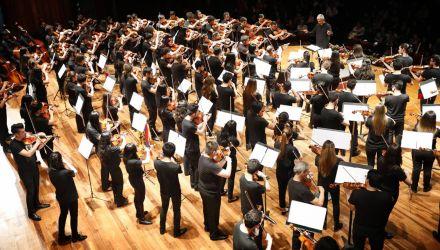 Orquesta de Violas del Festival Interviolas Bogotá